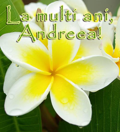 La multi ani, Andreea!