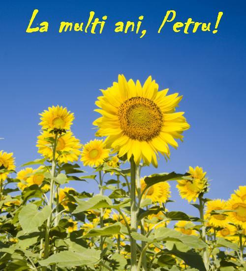 La multi ani, Petru!