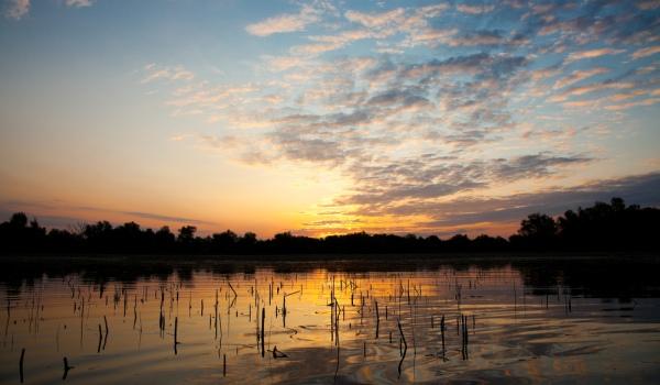 Foto: cele mai frumoase peisaje din Delta Dunării