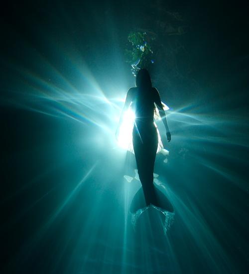 Foto incredibile: Hannah Fraser, femeia-sirena ce dansează cu balenele