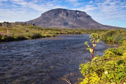 FOTO: Top 4 oaze superbe din lume. Vezi destinaţiile din mijlocul deşertului
