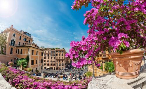 Destinaţii: Top 4 festivaluri cu flori în luna mai în Europa