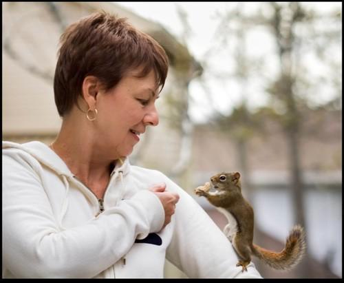 Imagini haioase cu veveriţe jucăuşe. Sigur te vor amuza! Foto