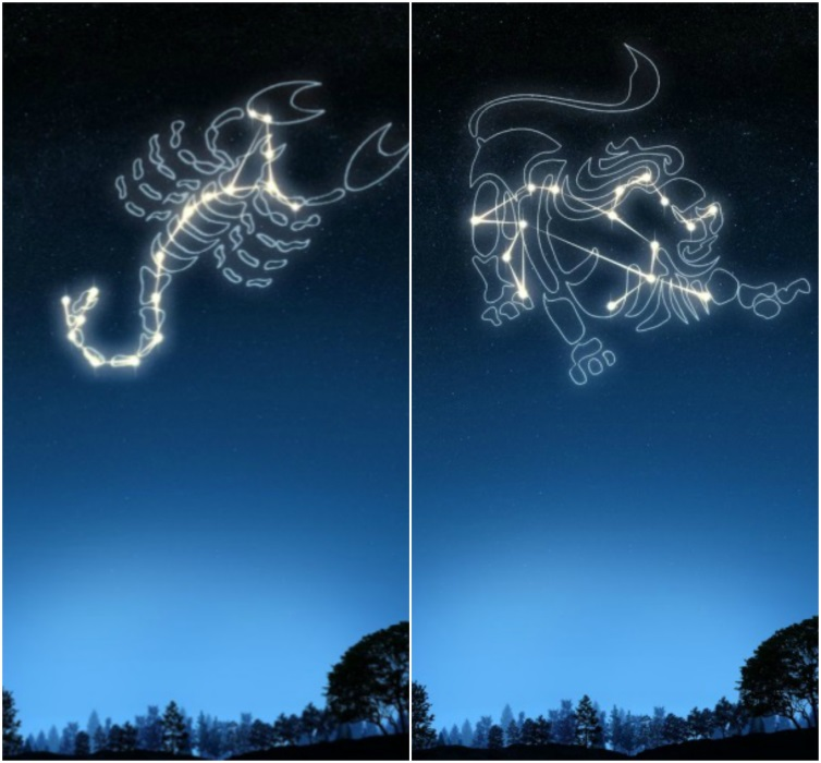 colaj-scorpion-leu
