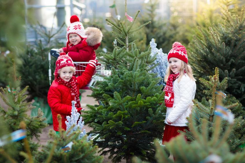 Împodobirea bradului de Crăciun