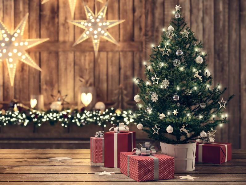 Povestea bradului de Crăciun în România