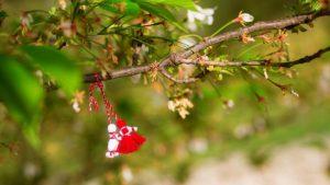 Felicitări de 1 Martie - Mărțișor. Trimite-le celor dragi mesaje cu imagini frumoase la începutul primăverii