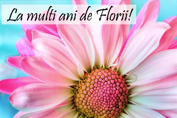Mesaje frumoase de Florii. Felicitări și mesaje cu imagini