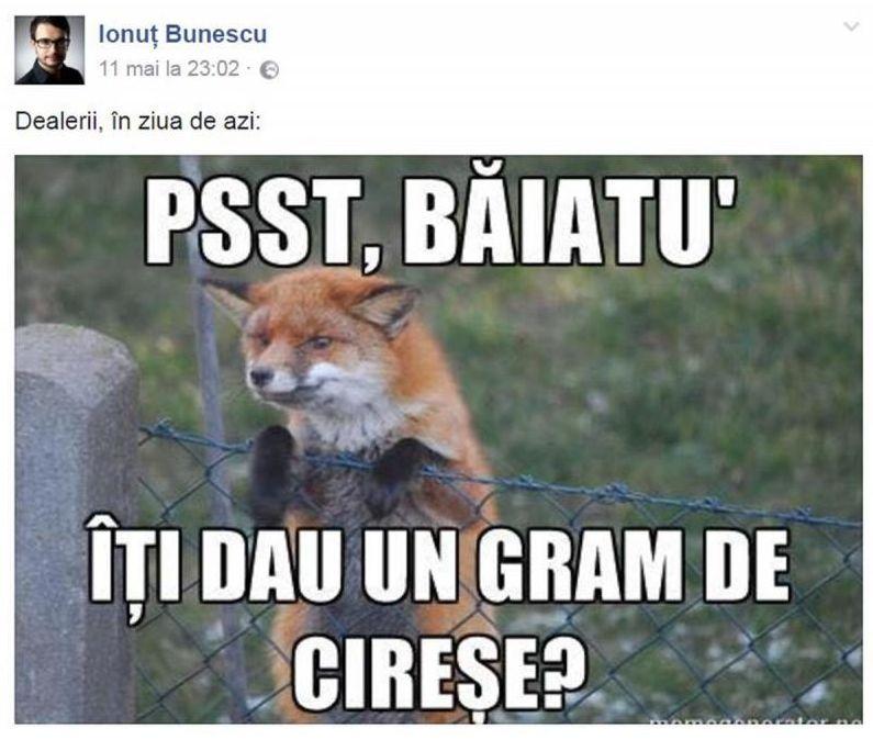 bunescu