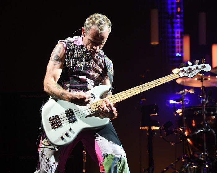 Chitaristul trupei Red Hot Chili Peppers