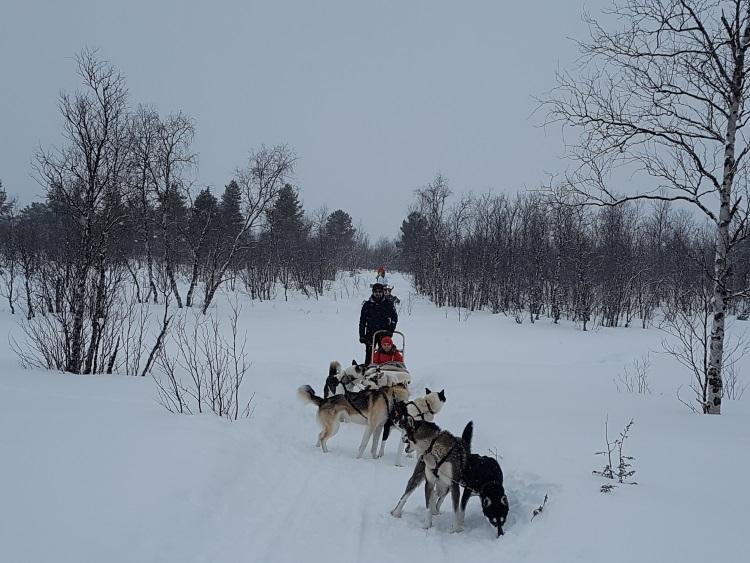 Exclusiv. UNICA a fost în Laponia, ținutul lui Moș Crăciun
