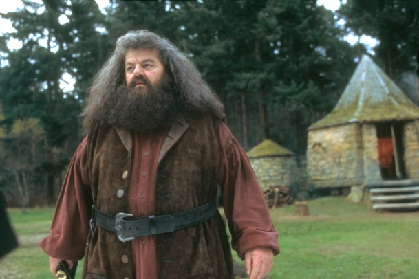 ROBBIE COLTRANE in rolul lui Rubeus Hagrid
