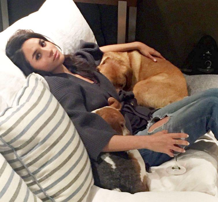Meghan Markle vrea să adopte un câine pentru Archie