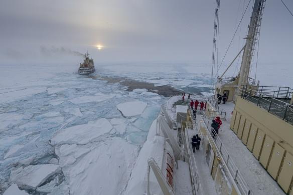 Adela Dumitrascu Polul Nord